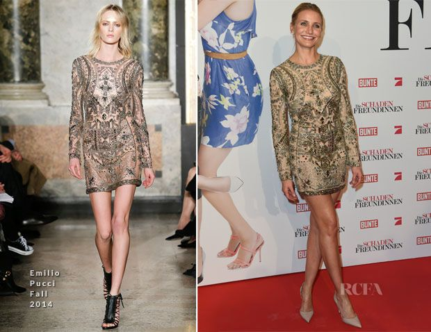 Cameron-Diaz-In-Emilio-Pucci-Fall-2014-The-Other-Woman-Munich-Premiere.jpg